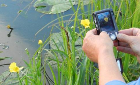 Cursus Digitaal fotograferen Nieuwegein