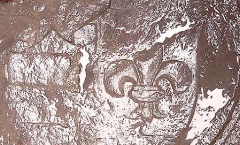 20150905_grafsteenannavanrijngroot