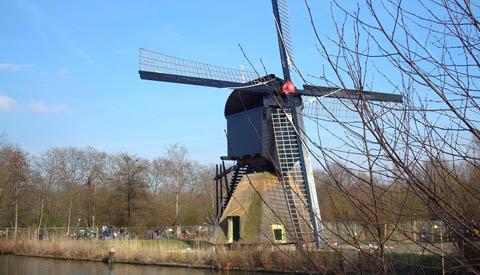 Column Willeke Stadtman: 'Mooiste stad'