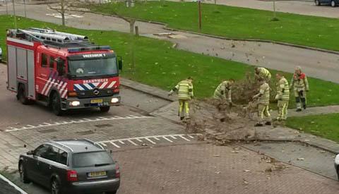 Weinig schade in Nieuwegein door februaristorm