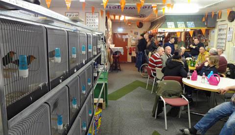 Vogeltjesmarkt bij 'Vogelvriend Nieuwegein'