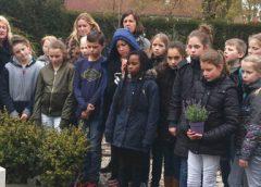 Leerlingen groep 7 Willem Alexander school bezoeken graf soldaat Hooper