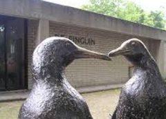 CDA Nieuwegein: 'Grote zorgen omwonenden Groenling niet weggenomen'
