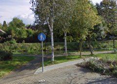 Column Willeke Stadtman: 'Bukken'