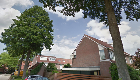PvdA wil dat het college kijkt naar het bomenplan in Nieuwegein