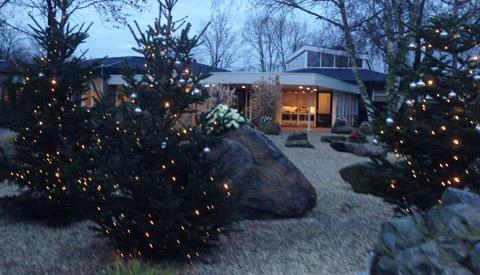 Kerstbomen op crematorium en begraafplaats Noorderveld