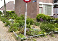 Studenten UU in gesprek met zelfbeheerders in Nieuwegein