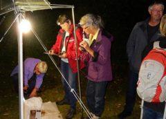 Nachtvlindernacht op 22 juni in het Milieu Educatie Centrum (MEC)