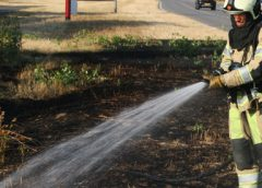 Blussen met de kraan open: brandweer heeft handen vol aan bermbranden