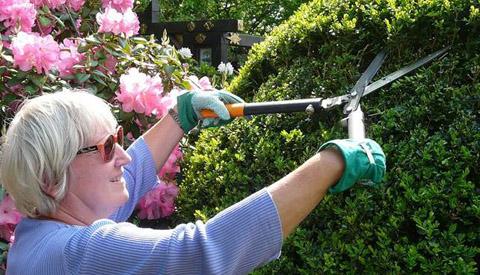Repair Café Nieuwegein in teken van de tuin