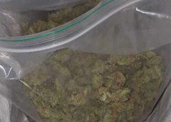 Drugsdealer betrapt in Nieuwegein