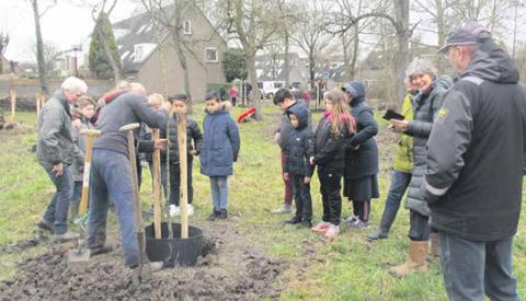 Kinderen planten op Boomfeestdag nieuwe perenboomgaard