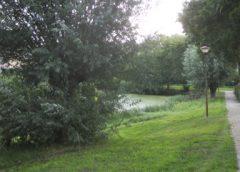 Groenwandeling in Hoogzandveld, Zandveld en Lekboulevard