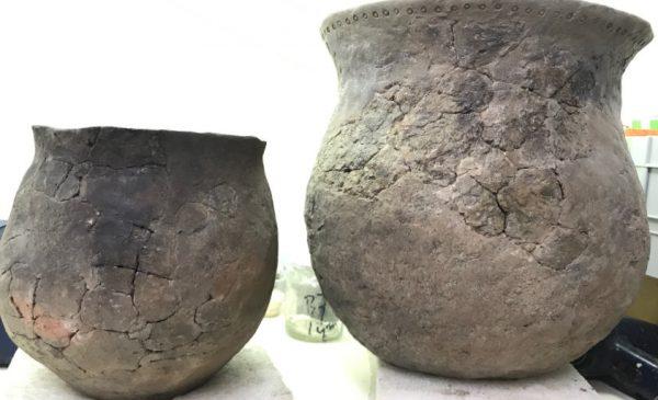 Archeologische ontdekvitrine onthuld op de Tweeklank