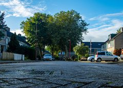 'De Korenbloemstraat'