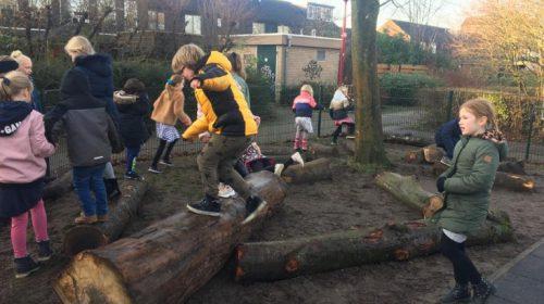 Natuurlijke speelelementen op schoolplein van 'Het Vogelnest'