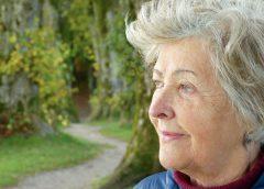 High-Tea voor kinderen met grootouders