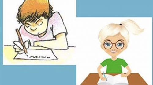Kinderen maken hun eigen Zomerboek
