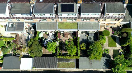 Nieuwegein krijgt er bijna 1000 m2 groene daken bij