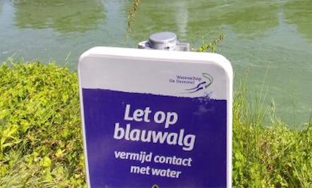 Blauwalg geconstateerd in Batau-Noord