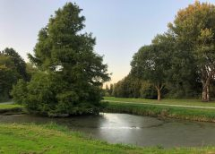 'GroenLinks beschermt Nieuwegeins cultuurhistorisch erfgoed'