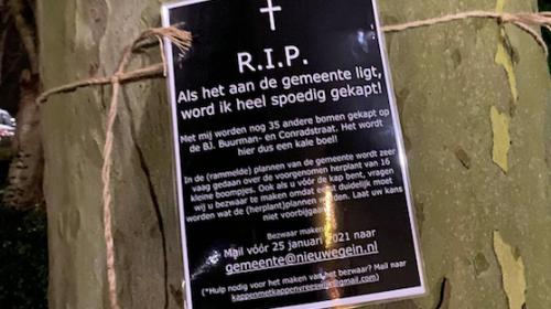 Bewoners starten actiegroep tegen bomenkap in Vreeswijk