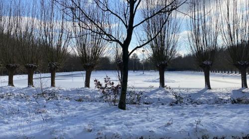 IJsbaan Nieuwegein open voor jongeren t/m 17 jaar