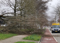 Vroege Lentestorm Evert raast over Nieuwegein