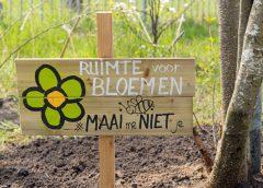Bouwgein boeit en bloeit!