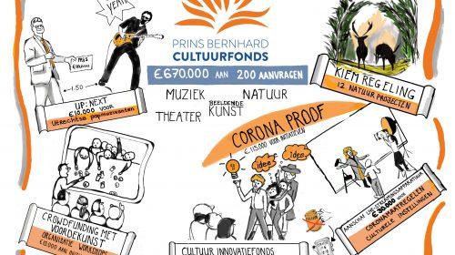 Cultuurfonds Utrecht steunt cultuur en natuur in Nieuwegein met € 10.500