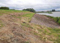 Veel vragen over verdwijnen bloemen op de Lekdijk bij Vreeswijk