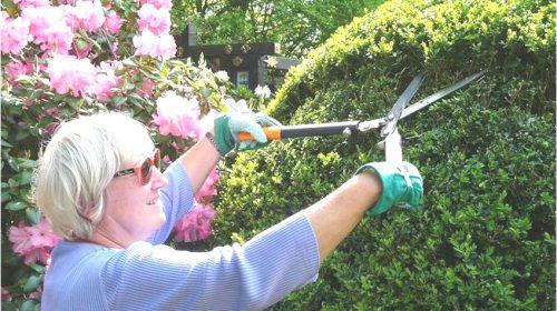 Repair café slijpt zaterdag 2 oktober aanstaande messen en snoeigereedschap